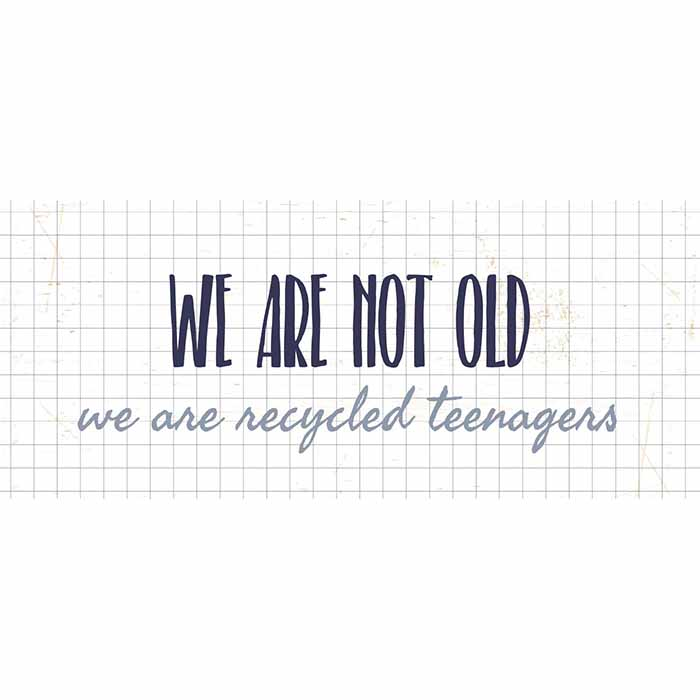 Metallikyltti We are not old