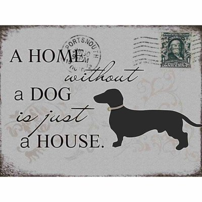 Metallikyltti Home without a dog